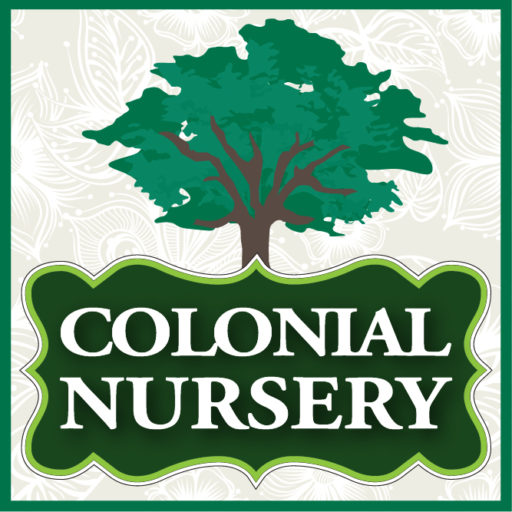 Monmouth County Nj Nursery Colonial Lincroft New Jersey And Garden Center